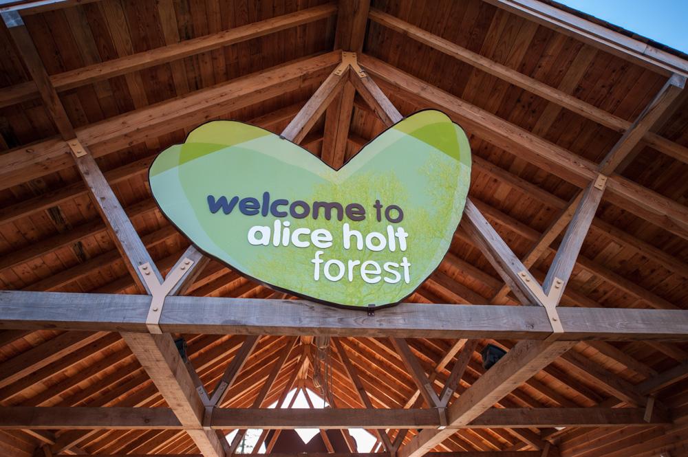 alice_holt_visitors_centre_031.jpg